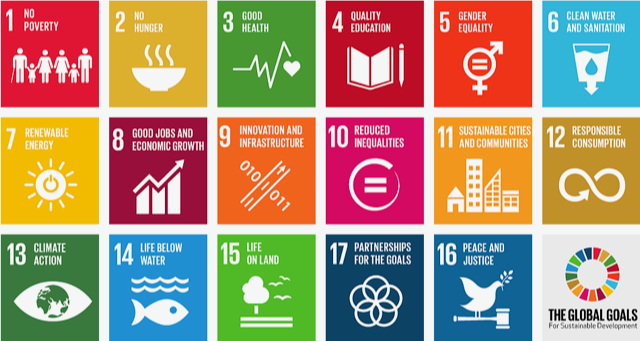 Info graphic of 17 sustainable social goals